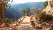 Trail Below the Rim