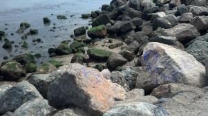 Graffiti Rocks