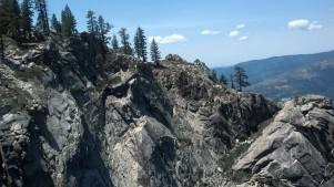 Tree Line Yosemite