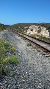 Rail Road Near 101