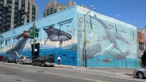 Underwater Live Mural