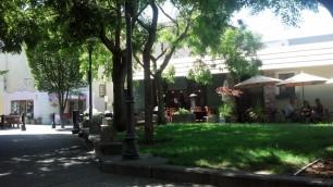 Lunchtime Park Petaluma, Ca