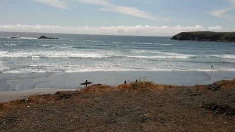 Surfers Oregon