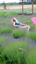 Relaxing in a Lavender Field