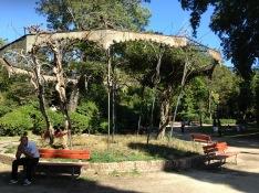 Park Arbor